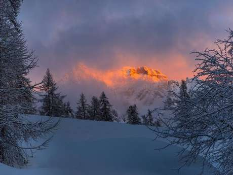 Découverte du trail sur neige