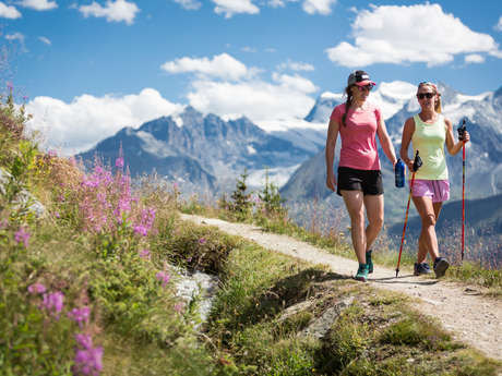 Thematische Wanderung - Hydrologie in den Bergen