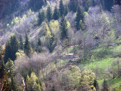 Hike - Tour of Le Pleynet and Laffreyte