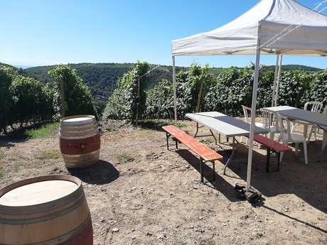 Brunch(di)vin au Domaine Pierre Gaillard