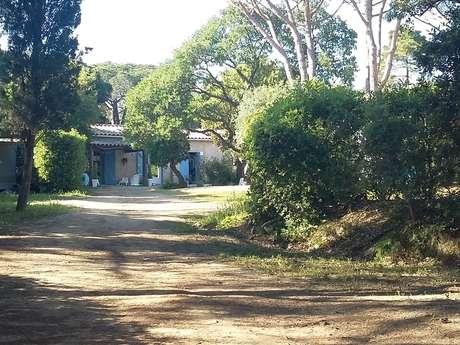 Les Tours du Pinet - Domaine Cezanne