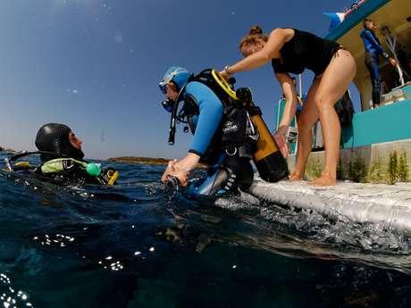 Fourmigue diving spot