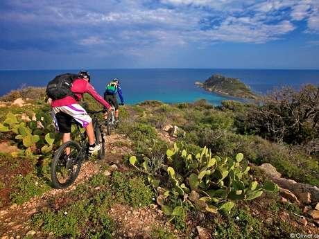 Pep's Spirit - Location de Vélos Urbains & VTT