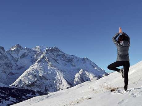 Yoga - Hatha - Vinyasa -Yin