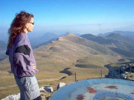 Andrea Bacher