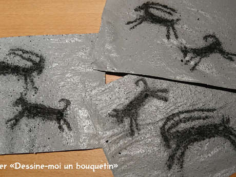 """Introduction workshop """"Draw me an ibex"""""""