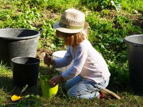 """""""Les mains dans la terre"""", apprentissage du jardinage, en famille"""