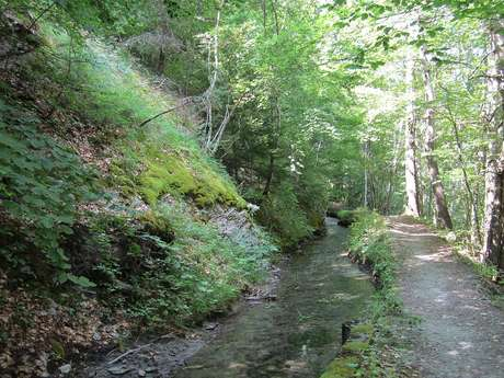 Le canal des Herbeys