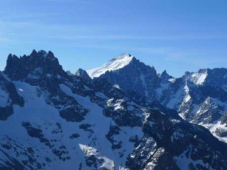 Course collective - Tête du Replat (3335m)
