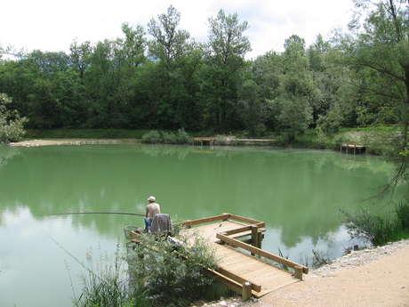 Le lac du Sauget