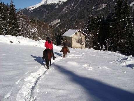 Balade à cheval nocturne dans la neige