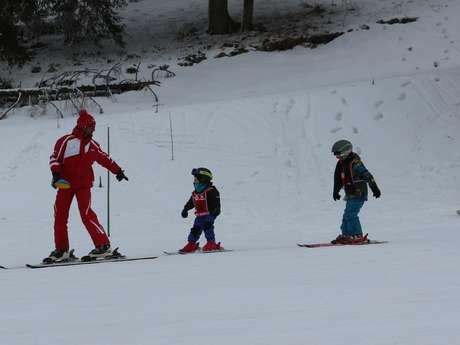 Group alpine ski lesson