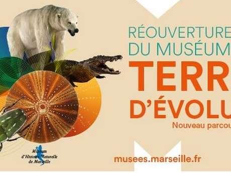 Museum d'Histoire Naturelle (Natural History Museum)