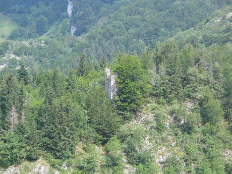Le château d'Entremont, dit de Montbel ou des Teppaz