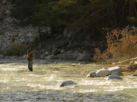 Parcours Pêche de Savoie «Prendre et relâcher» sur l'Arc à Aussois