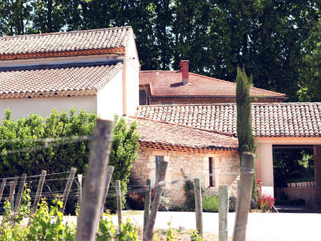 Cellar visit and tasting at Domaine de la Fourmone