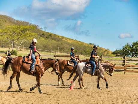 Cours d'équitation western  - Lasbleiz Western Training