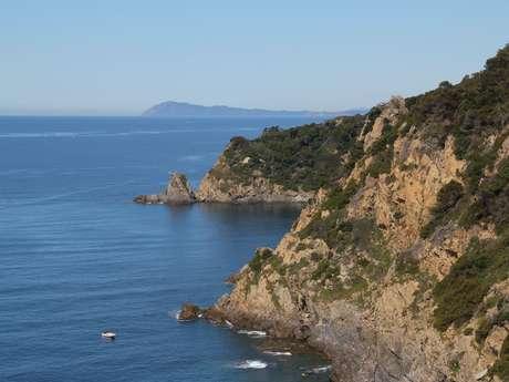 Balade découverte : Découverte de la côte sud de Porquerolles