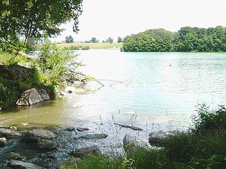 Plan d'eau de la Gravière et détournement de la Veyle
