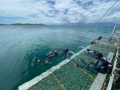 Baptême de plongée - Mobula Diving