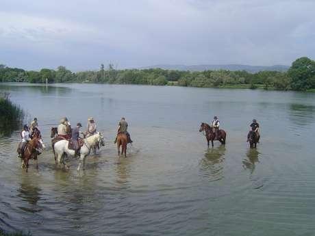 Ferme Passion - Centre Equestre