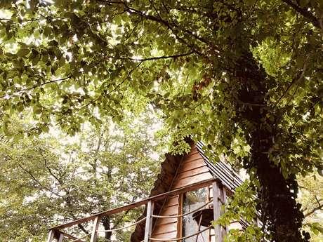 Cabanes perchées pour 2 personnes (confort) - Cerfs et Rennes