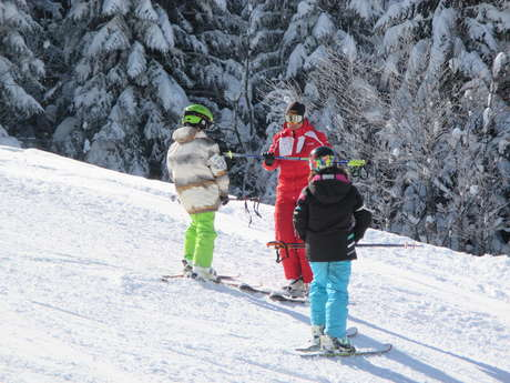 Group alpine ski lessons
