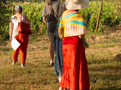 Balade pédagogique au coeur du vignoble du Domaine de Mas Caron
