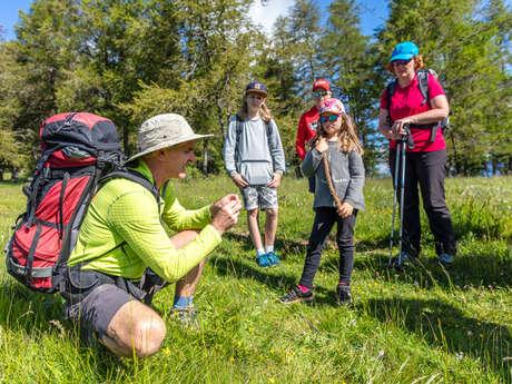 Randonnée avec les accompagnateurs en montagne