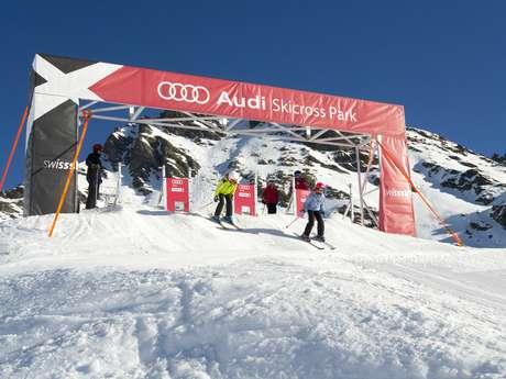 Audi Skicross