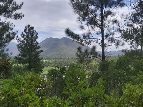 Parc du Mont Goumba