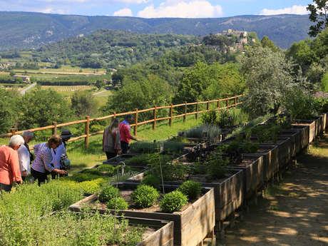 Le Jardin botanique de la Citadelle