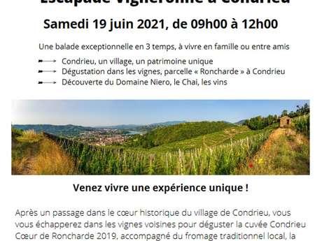 """Escapade vigneronne """"Coeur de Roncharde"""""""