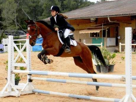 Stage équitation à la journée: Les écuries de Fondurane