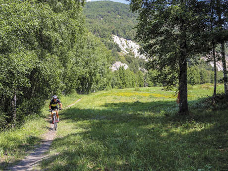 9 - Cross-country - Rouge - Le Grand Cerf