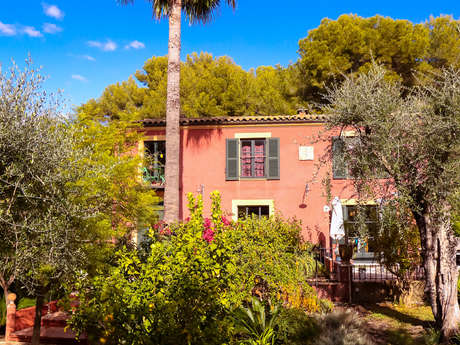 Bed and Breakfast sotto l'ulivo