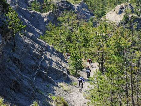 Chemins du Soleil - De Digne-les-Bains à Tartonne - Les terres noires à VTT