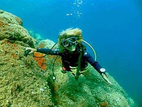Formations et plongées d'exploration - La Cigale