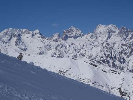 Randonnée glaciaire : le tour des Ailesfroides