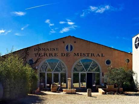 Terre de Mistral : Visite guidée (FR et GB) des ateliers viticoles et oléicoles suivie de dégustations