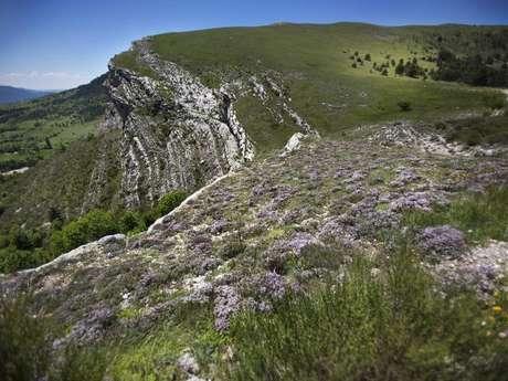 Réserve naturelle géologique de Haute-Provence