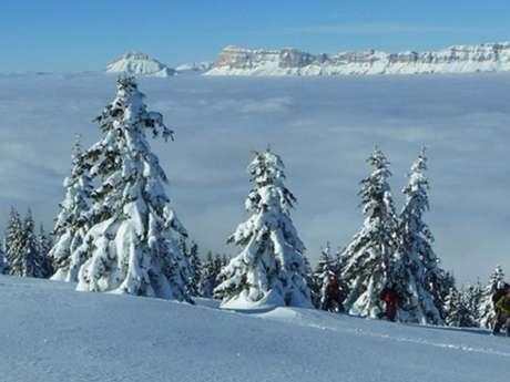 Snowshoeing initation