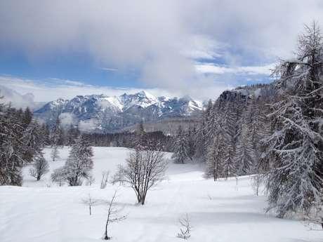 Balade en raquettes: Les grands alpages de la cabane du Laus