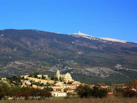 Klettern - Bedoin