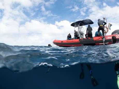 Sortie 2 plongées - Bourail Aquadiving