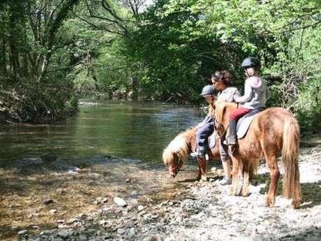 Centre Equestre Les Ecuyers du Paradou