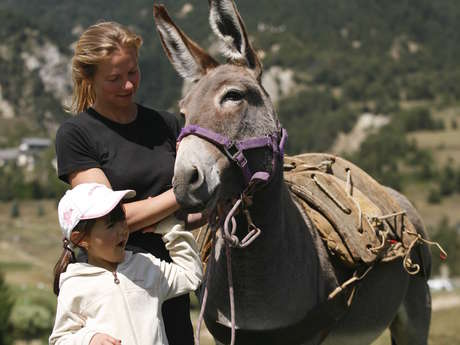 Ride and meeting with donkey