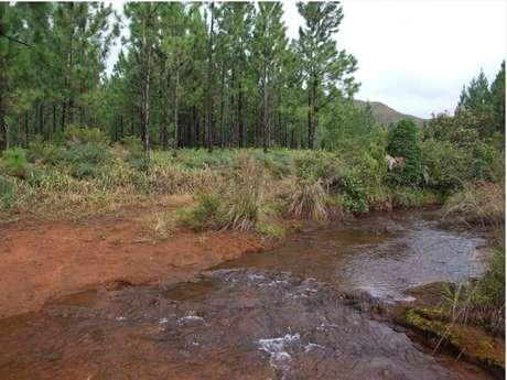 Piste 1 - Piste du Creek aux Boucles de Netcha : Piste temporairement inaccessible