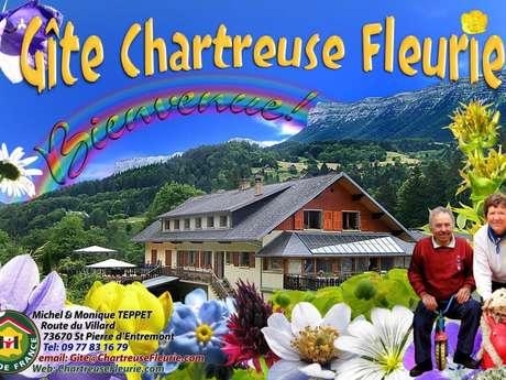 Chartreuse Fleurie Gentiane