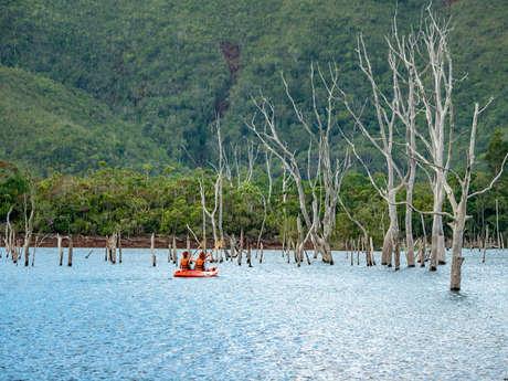 Grande traversée de la forêt noyée en kayak - Sud Loisirs